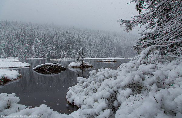 Arbersee Schneefall